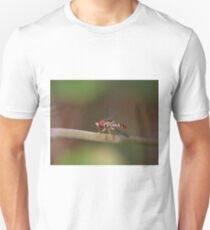 Macro of Hoverfly Warming in the Sun Unisex T-Shirt