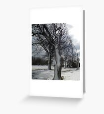 Really Weird Trees Greeting Card