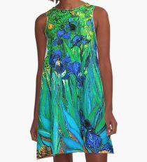 Van Gogh Garden Irises HDR A-Line Dress