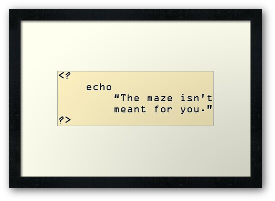 The Maze Isn\'t Meant For You\