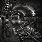 1176 In the Tunnel by DavidsArt