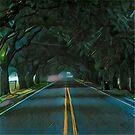 Highway Oak Tree Canopy Tunnel  by hilda74