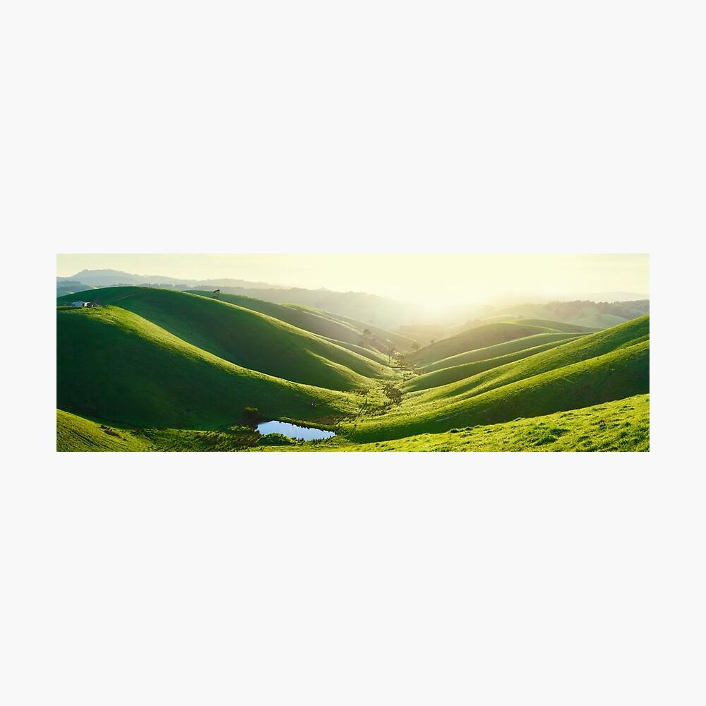 Green Hills, Gippsland, Victoria, Australia Photographic Print