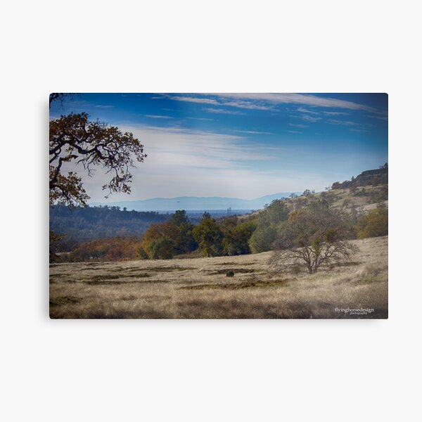 the view form Yahi trail Metal Print