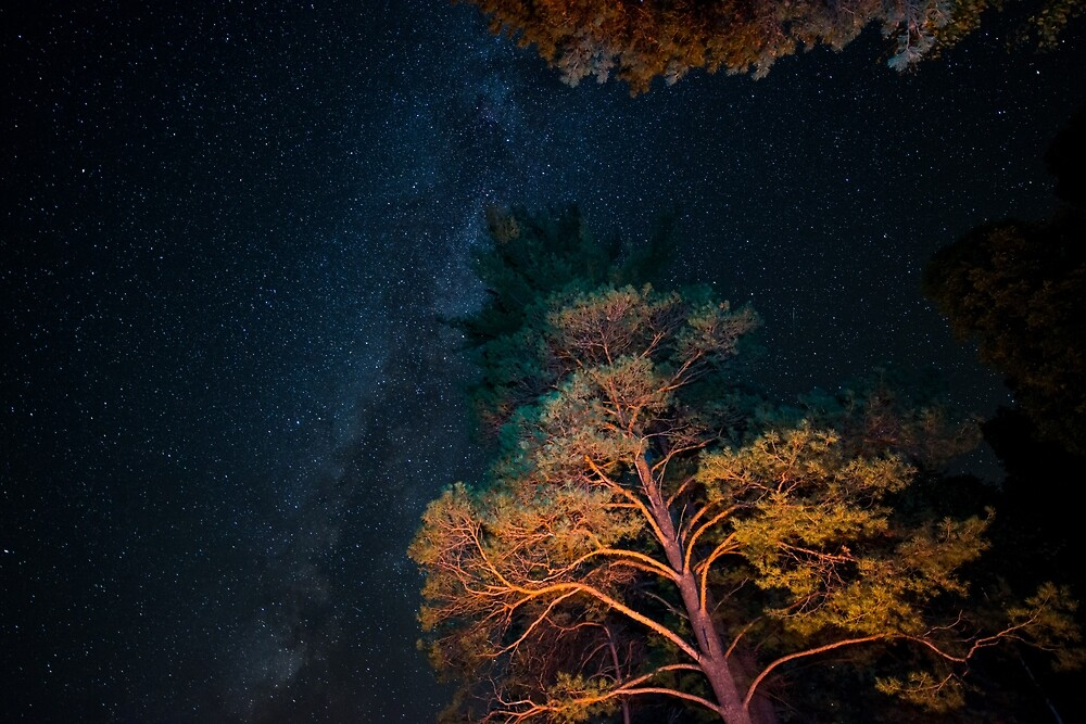 Starry Night Northern Canada by justinrusso