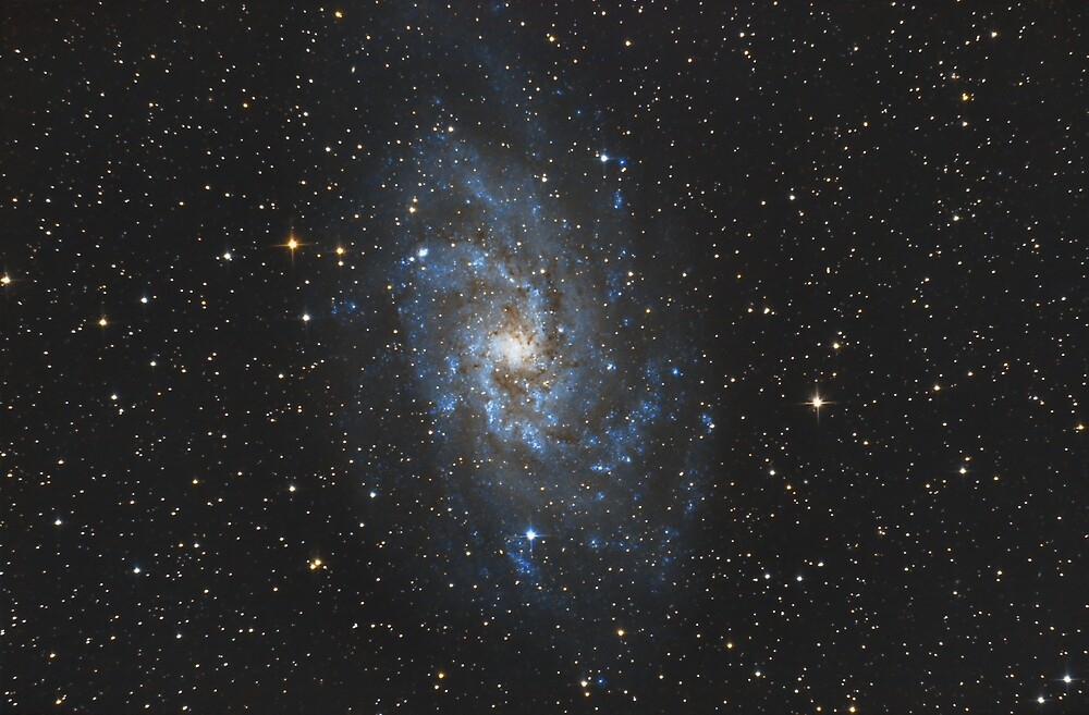 M33 - The Triangulum Galaxy by galactichunter