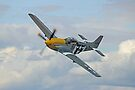P51 Mustang Ferocious Frankie - Dunsfold 2014 by Colin  Williams Photography