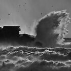 On The Wings Of The Storm by AJM Photography