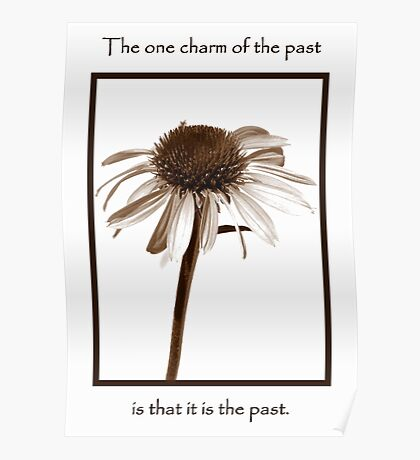 The Charm Of The Past Poster