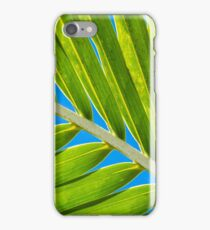 Palm Frond Detail iPhone Case/Skin