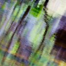 Tree Reflection Water Abstract by Brad Baker