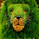 Kiss Me, I'm Irish !!! by artisandelimage