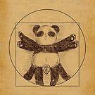 «El Panda de Vitruvio» de holocubierta