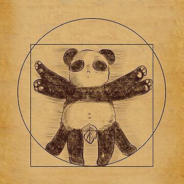 El Panda de Vitruvio de holocubierta