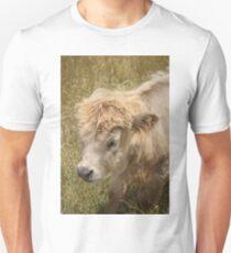 Highland Cattle Calf Unisex T-Shirt