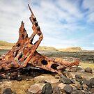 SS Speke shipwreck - Phillip Island by Jim Worrall
