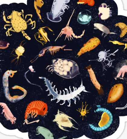 Plankton Sticker