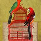Parrots by Sarah Jarrett