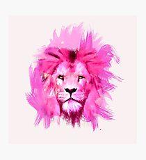 Pink Lion Photographic Print