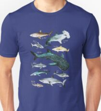 Shark Species Graphic 10 different Sharks on One Print Unisex T-Shirt