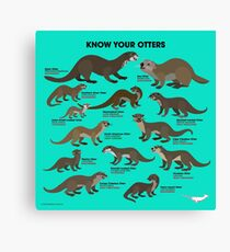 Know Your Otters Canvas Print