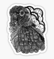 Greyscale Conure Sticker