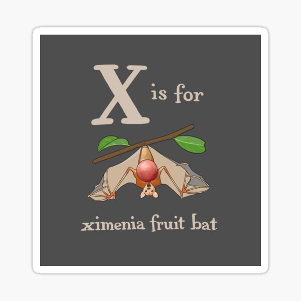 X is for Ximenia Fruit Bat Sticker