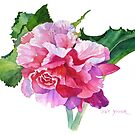 A Summer's Begonia by Pat Yager