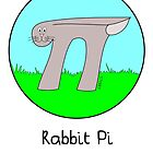 Rabbit Pi by Hannah Sterry