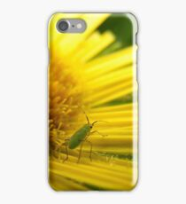 Aphid on Petals iPhone Case/Skin