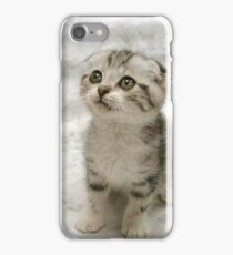 Sad Kitten (You eated my cookie?) iPhone Case/Skin