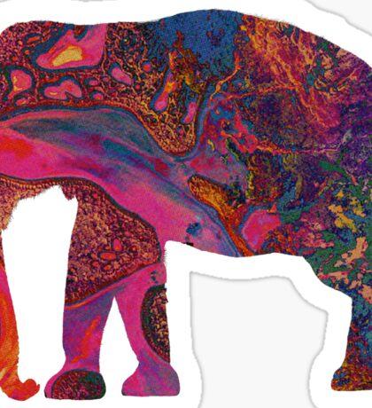 Tame Impala | Elephant Sticker