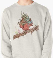 Little Adventurer Pullover Sweatshirt