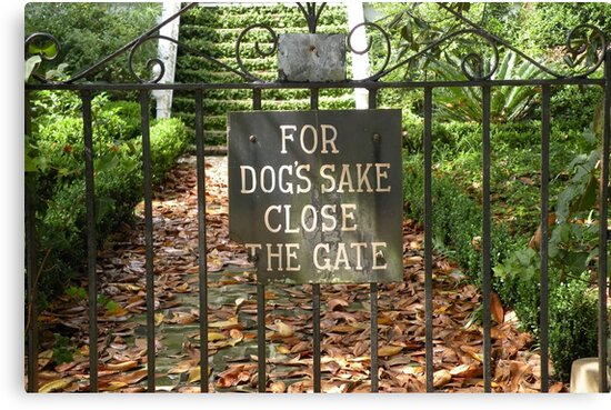 """For Dog's Sake Close the Gate"" by Trish Meyer"