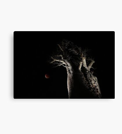 The Blood Moon And The Boab Tree Canvas Print