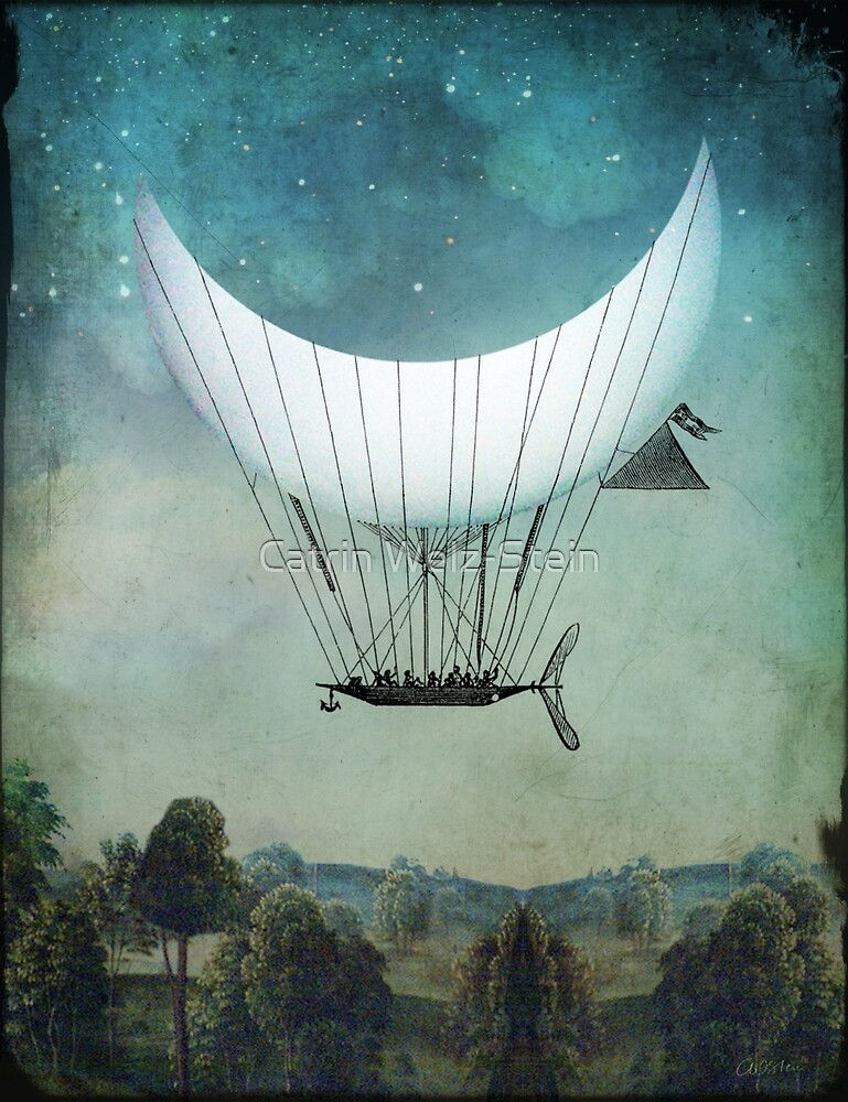 The Moon Ship by Catrin Welz-Stein