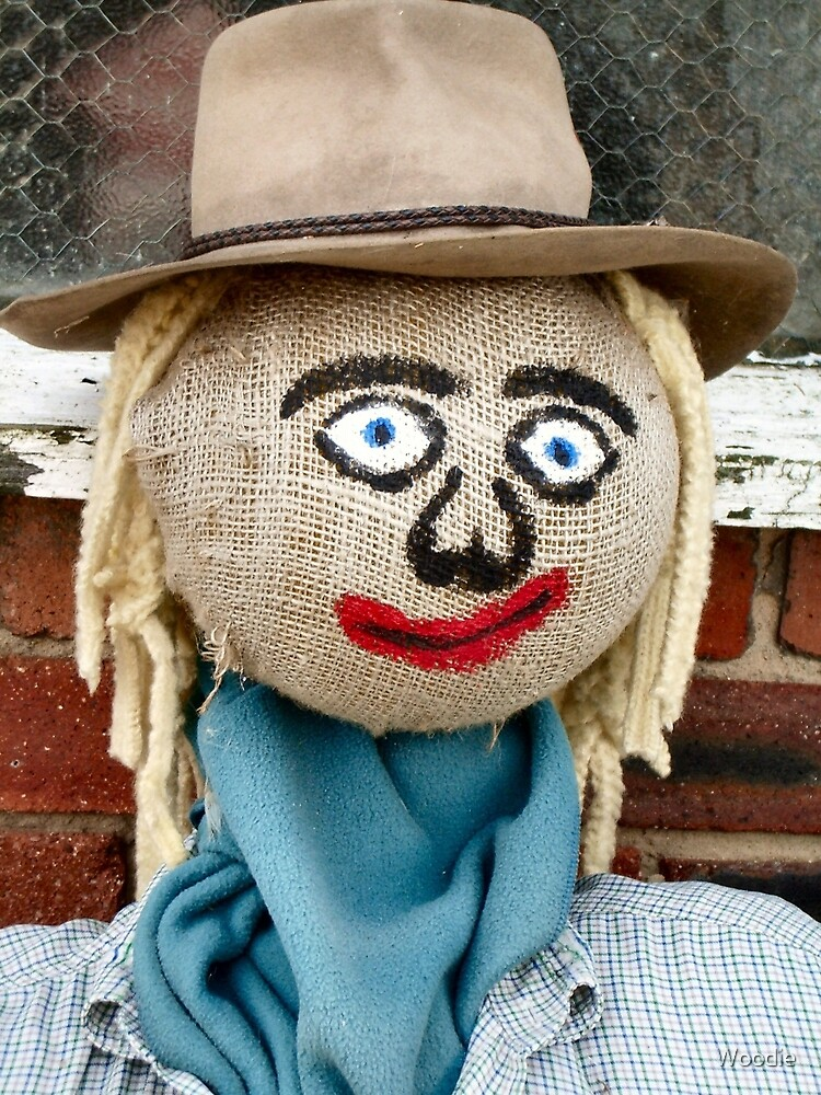 Scarecrow Guy by Woodie