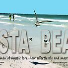 Seagulls on Siesta Beach by EyeMagined