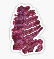 Japanese pine (intestine cells of the earthworm) Sticker