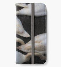 kopflose Schwäne, die in einen See einziehen iPhone Flip-Case/Hülle/Klebefolie