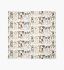 Rat Terrier Puppies Scarf