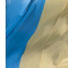 Waving Flag of Ukraine From 2014 Winter Olympics by pjwuebker