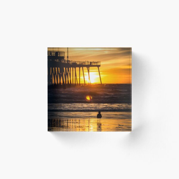 Pismo Beach Sunset with seagull Acrylic Block