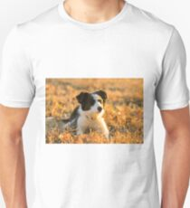 Border Collie puppy in nature Unisex T-Shirt