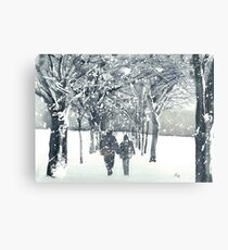 Meadows Snow Metal Print