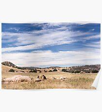 Dry meadows near Julian, CA Poster