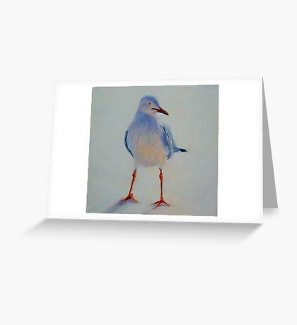 Sunset Seagull. Elizabeth Moore Golding 2011 Greeting Card