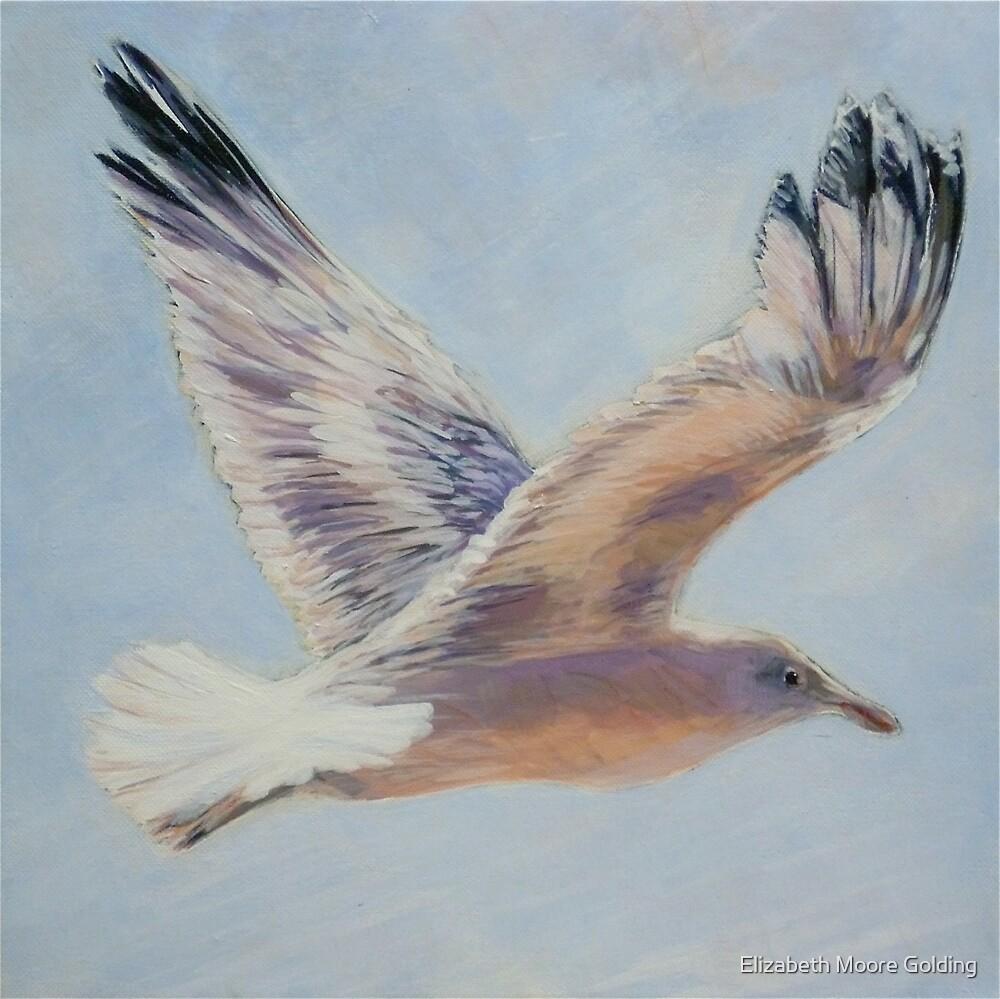 Seagull in flight. Elizabeth Moore Golding 2010  by Elizabeth Moore Golding