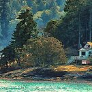 Gulf Islands 16 by Terry Krysak