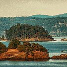 Gulf Islands 27 by Terry Krysak